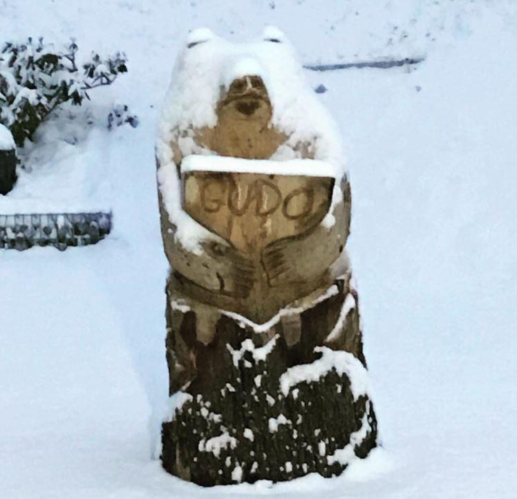 "Norman Gobbi: ""Nevica"""