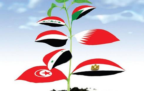 Dalla primavera araba all'inverno islamico?